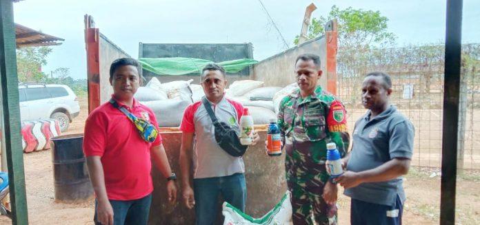 Caption: Babinsa Pos Ramil 1711-02/01 Camp Tunas bersama pemerintah Boven Digoel, saat menyerahkan pupuk dan pembasmi hama kepada kelompok tani, Minggu (15/09/2019)