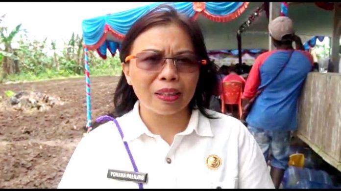 Kepala Dinas Pertanian Tanaman Pangan dan Perkebunan Kabupaten Mimika Yohana Paliling