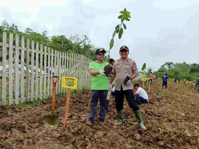 Caption : Bupati Keerom, Muh. Markum Muh. Markum, SH, MH, MM bersama Kapolres Keerom, saat menanam pohon di di Jln. Bhayangkara, Kampung Asyaman - Arso Swakarsa, Distrik Arso, Kabupaten Keerom, Jumat (10/01/2020).