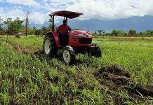 Ilustrasi pengolahan lahan untuk pertanian