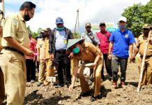 Pencanangan penanaman berbagai jenis komoditas oleh Pemerintah Daerah Kabupaten Jayapura di lahan kebun milik kelompok tani di Distrik Nimboran, Selasa (30/6/2020).
